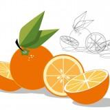 Una naranja vista por un diseñador