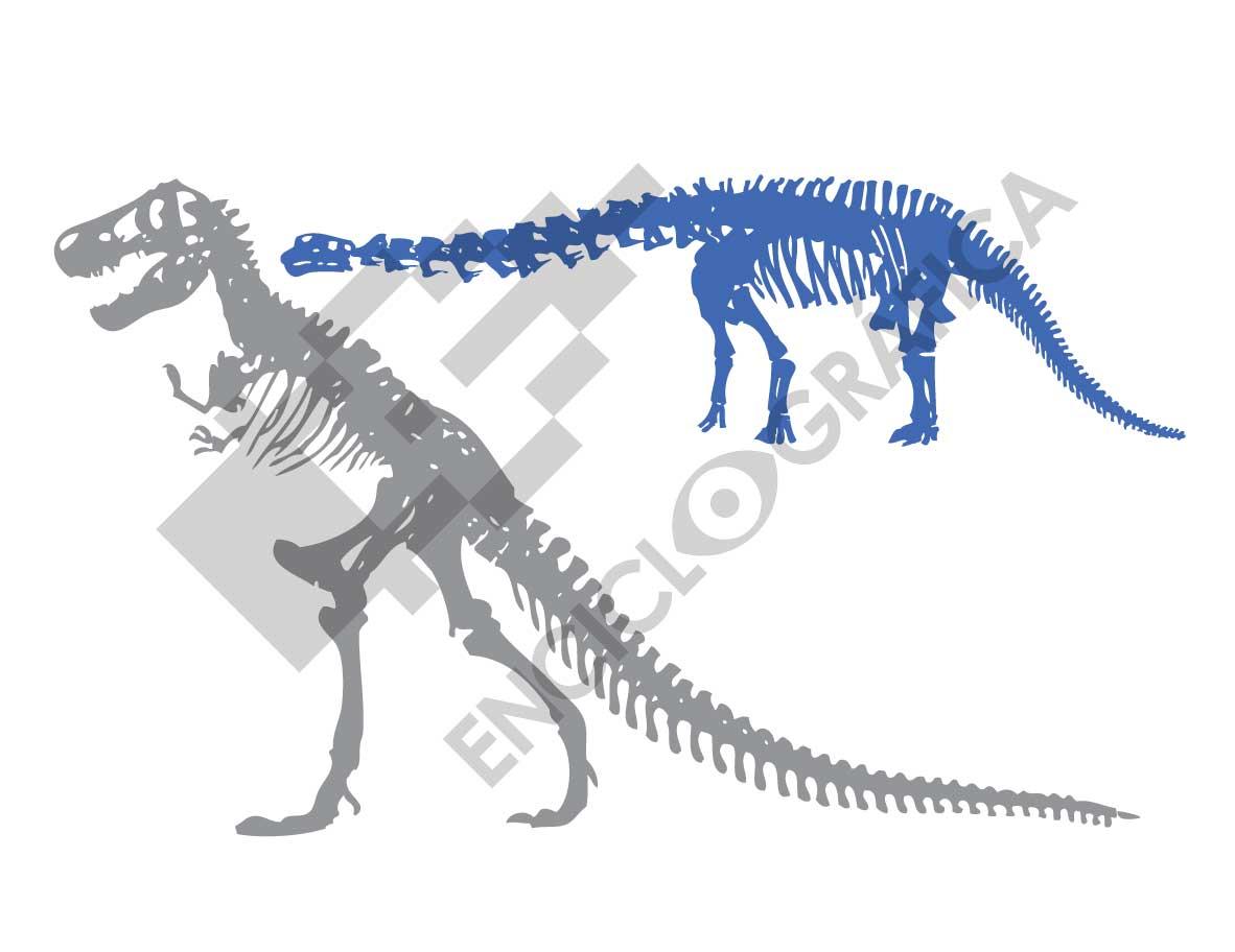 Esqueletos de Dinosaurios