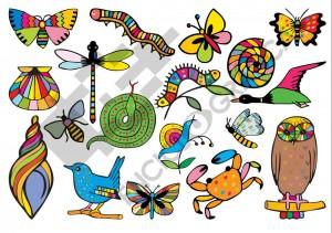 Animalitos de colores